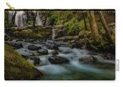 Brandy Creek Falls Carry-all Pouch