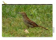 Brown Thrasher Carry-all Pouch