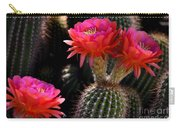 Sonoran Spring Carry-all Pouch