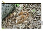 Camouflaged Fawn Carry-all Pouch