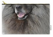 Canine Beauty Carry-all Pouch
