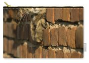 Cat On A Brick Wall Carry-all Pouch