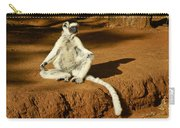 Catching Rays Carry-all Pouch