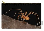 Cave Harvestman Carry-all Pouch