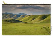 Central Valley California Carry-all Pouch