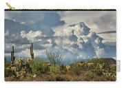 Chasing Clouds Again  Carry-all Pouch