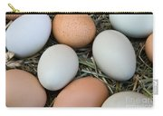 Chicken Eggs Carry-all Pouch