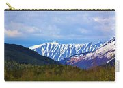 Chugach National Forest  Carry-all Pouch