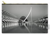 City Of Arts And Sciences Carry-all Pouch