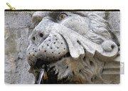 Closeup Of A Public Fountain In Dubrovnik Croatia Carry-all Pouch