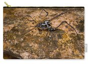 Colorful Harvestman Carry-all Pouch