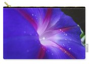 Come Hither Indigo Carry-all Pouch