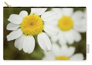 Daisies #1 Carry-all Pouch