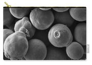 Debaryomyces Hanseni Yeast Carry-all Pouch