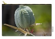 Desert Seed Pod 1 Carry-all Pouch