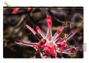 Desert Wildflower Carry-all Pouch