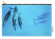 Dolphins At Rest Carry-all Pouch