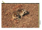 Green Heron Babies Carry-all Pouch