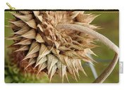 Dried Up Thistle Carry-all Pouch