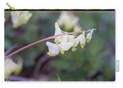 Dutchman's Breeches 3 Carry-all Pouch