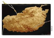 Earwax Particle, Sem Carry-all Pouch