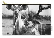 East Africa: Kudu Carry-all Pouch