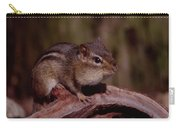 Eastern Chipmunk On Stump Carry-all Pouch