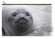 Elephant Seal Pup Carry-all Pouch