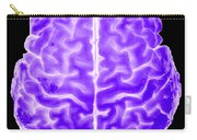 Enhanced 3d Surface Rendering Of Brain Carry-all Pouch