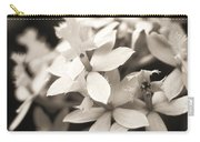 Epidendrum Orchid Carry-all Pouch