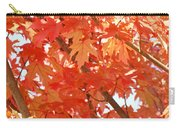 Fall Trees Colorful Autumn Leaves Art Baslee Troutman Carry-all Pouch