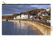 Filey Carry-all Pouch by Svetlana Sewell