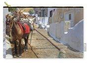 Fira - Santorini Carry-all Pouch