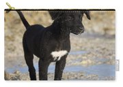Fishing Puppy Of Polynesia Carry-all Pouch