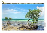 Florida Keys Mangrove Reef Carry-all Pouch