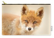 Foxy Face Carry-all Pouch