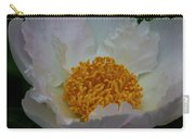 Franklin Tree Flower 1 Carry-all Pouch