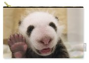 Giant Panda Ailuropoda Melanoleuca Cub Carry-all Pouch