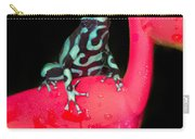 Green And Black Poison Dart Frog Carry-all Pouch