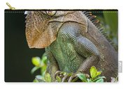 Green Iguana Iguana Iguana, Sarapiqui Carry-all Pouch