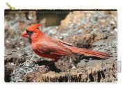 Hungry Cardinal Carry-all Pouch