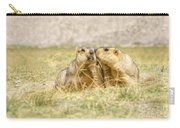 Himalayan Marmots Pair Kissing In Open Grassland Ladakh India Carry-all Pouch