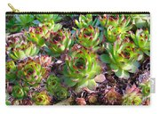 Houseleeks Carry-all Pouch