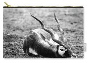 Indian Antelope Carry-all Pouch