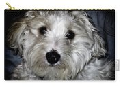 Jasper 0049 Carry-all Pouch