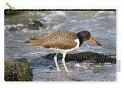 Juvenile Oystercatcher Carry-all Pouch