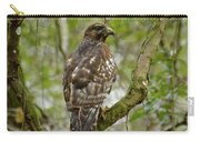 Juvenile Short-tailed Hawk Carry-all Pouch