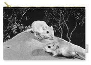 Kangaroo Rat Carry-all Pouch