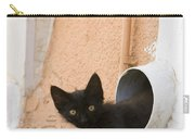 Kitten In A Pipe Carry-all Pouch