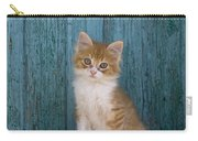 Kitten On A Greek Island Carry-all Pouch
